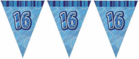 BLUE DAZZLING 16 BANNER FLAGG