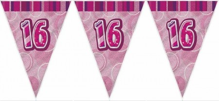 PINK DAZZLING 16 BANNER FLAGG